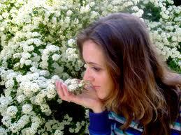sentido del olfato